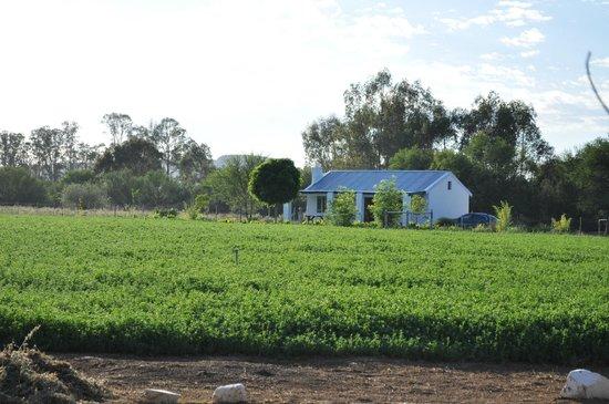 Karoo Pandok: Farmers Cottage