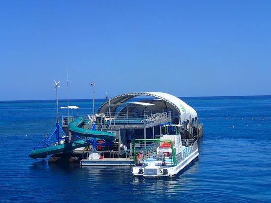Cruise Whitsundays: Pontoon at Knuckle Reef