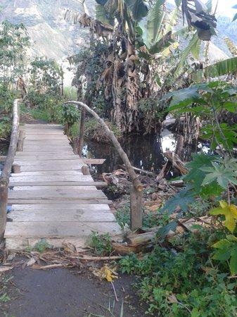 Eco Hotel Uxlabil Atitlan : Camino hacia el hotel. Puente improvisado.