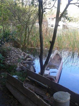 Eco Hotel Uxlabil Atitlán: Ahora este es el jardin