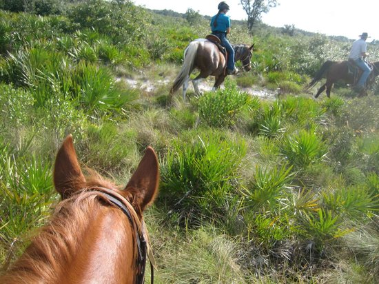 Westgate River Ranch Resort & Rodeo: On the Trail