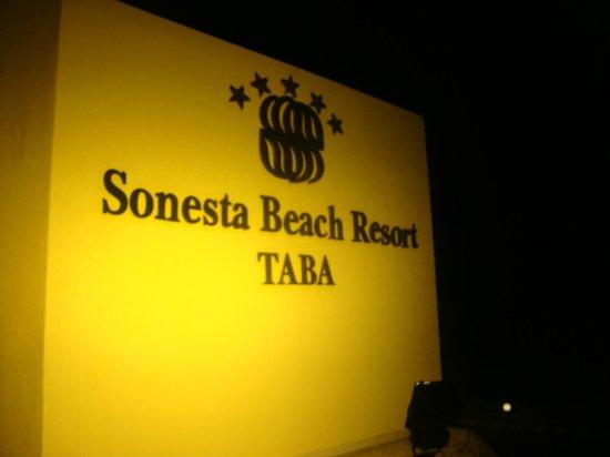 Sonesta Beach Resort & Casino: Entrada