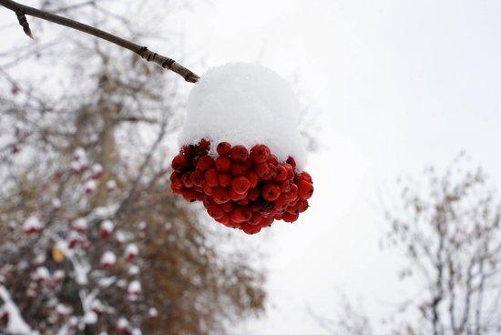 Kongress Hotel Davos: Winter Time in Davos