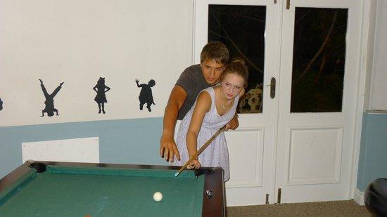 Grootbos Garden Lodge: Billiardsaal