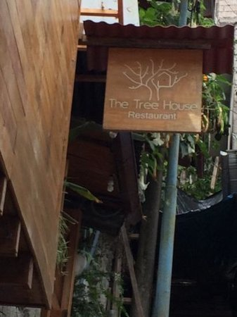 The Tree House : You made it up the stairs :)