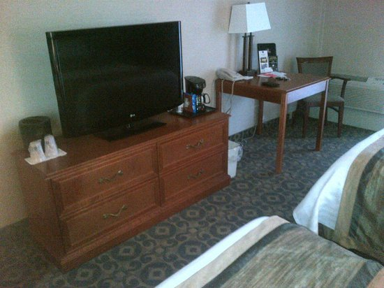 BEST WESTERN PLUS Brant Park Inn & Conference Centre: flatscreen tv