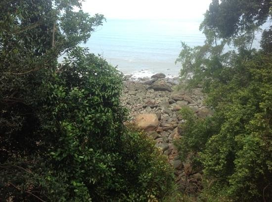Permai Rainforest Resort: view of beach from treehouse 2