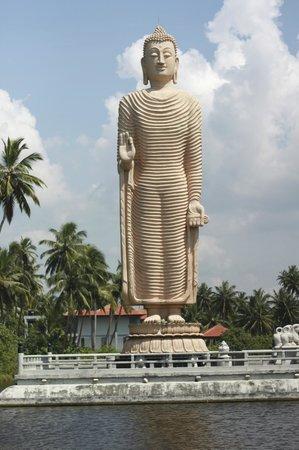 Select Sri Lanka Day Tours: 10
