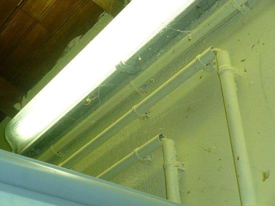 Les Pinedes du Luberon: Toiles d'araignée dans les douches