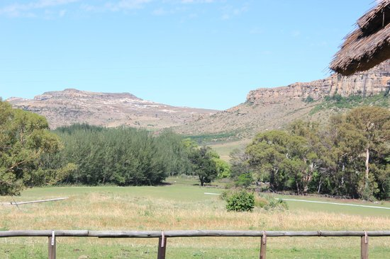 Franshoek Farm and Polo School: view from room