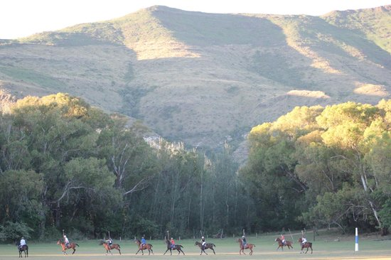 Franshoek Farm and Polo School: polo with a view