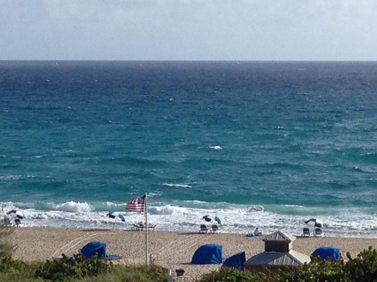 Palm Beach Shores Resort and Vacation Villas: Room view