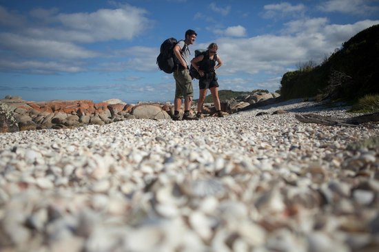 Bay of Fires Lodge: One of the many shell coves