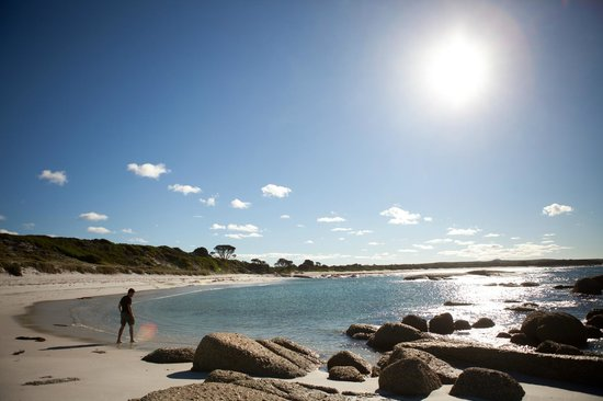 Bay of Fires Lodge: Bay of Fires
