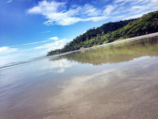 Shaka Beach Retreat: the beach in front of Shaka