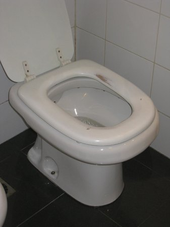 Four Points By Sheraton Montevideo: Toilet seat in need of coat of paint