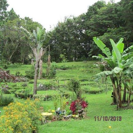 El Explorador Gardens: One of many pathways