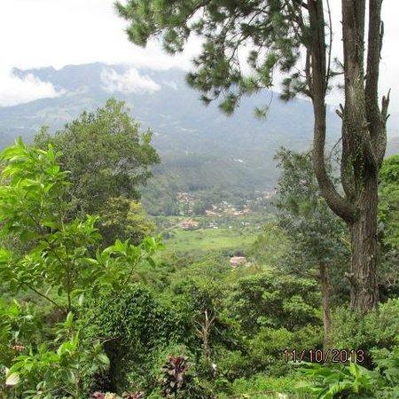 El Explorador Gardens: Fantastic view to town
