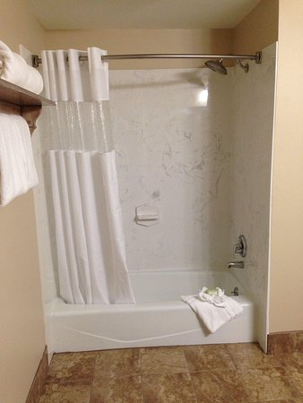 Brookstown Inn: Great sized shower with huge shower head!