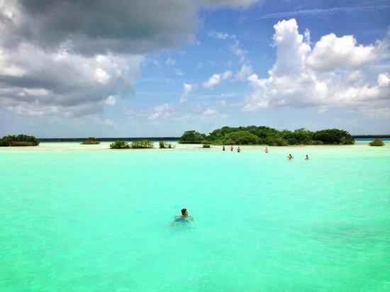 Casa Tortuga: swimming
