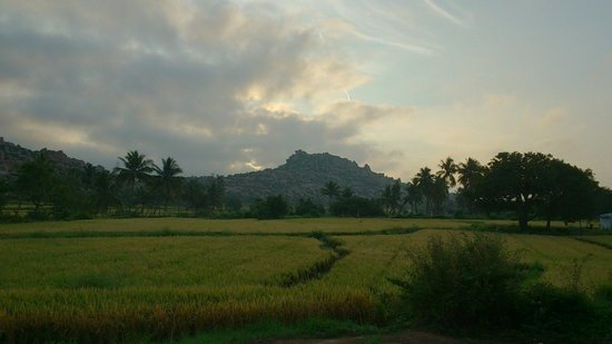 Gowri Resort: view from our veranda