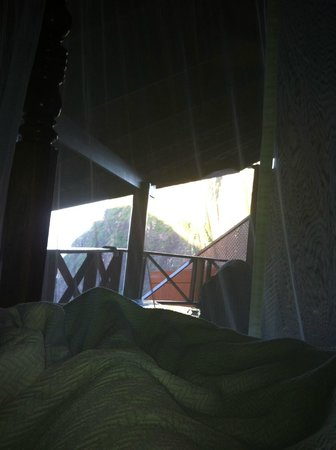 Ladera Resort: View from bed each morning.