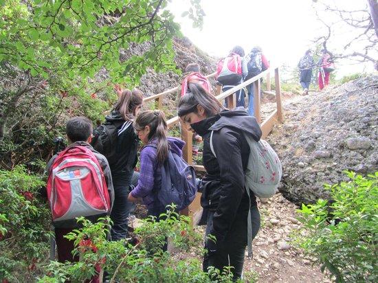 Trekking hacia el mirador de la Cueva del Milodon