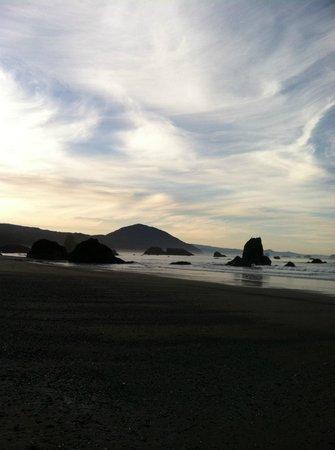 WildSpring Guest Habitat : beach