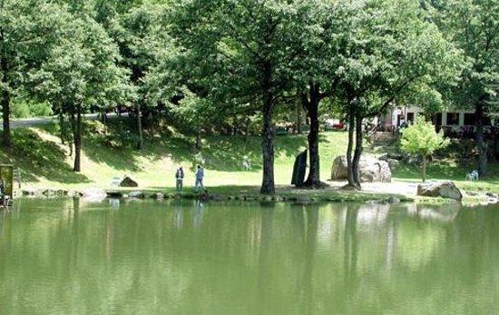 vista lago - Foto di Ristorante Lago dei Pontini, Bagno di Romagna ...