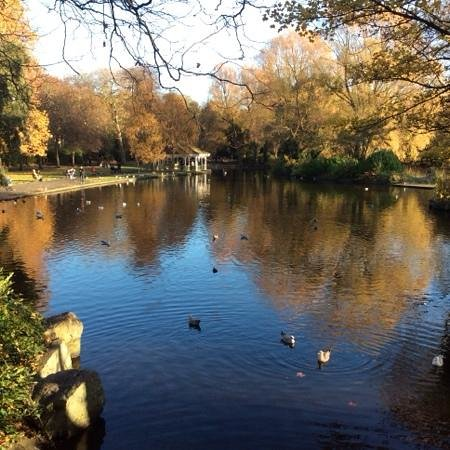 Parque St Stephen's Green: Autumn on the Green