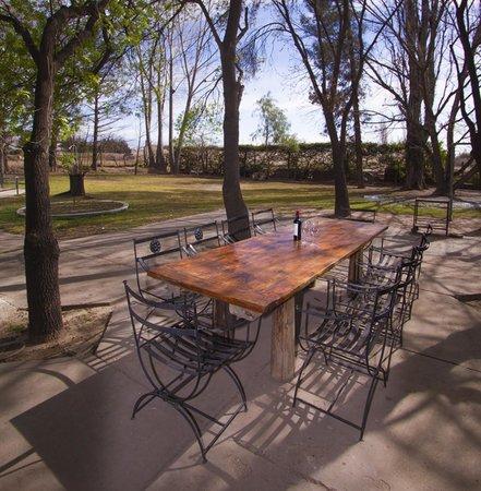 Lujan de Cuyo B&B: La mesa del jardín donde cenamos en verano