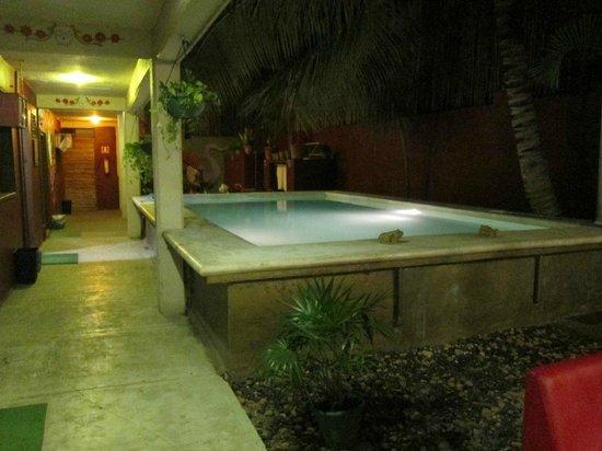 Chalupa Hostal : pool