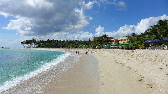 Caribe Paraiso Juan Dolio : The carebean sea .... the beach ... unbelievable, wonderful!