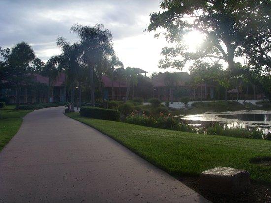 Disney's Coronado Springs Resort: Grounds during the day