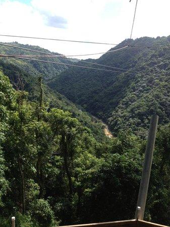 Toro Verde Nature Adventure Park : view of zip line