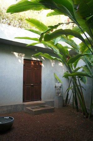 Taru Villas - Lake Lodge : Our very own garden