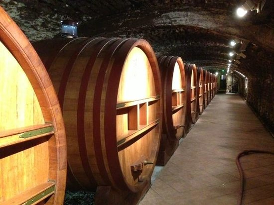 Tours du Rhone: Down in the Wine Cave