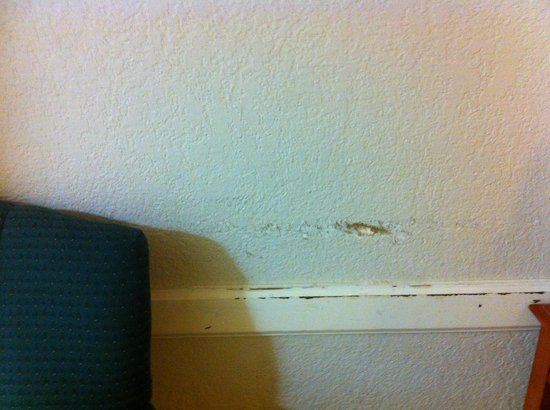 La Quinta Inn Pensacola: wall by the bed