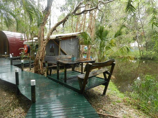 The Arts Factory Backpackers Lodge : Island retreats