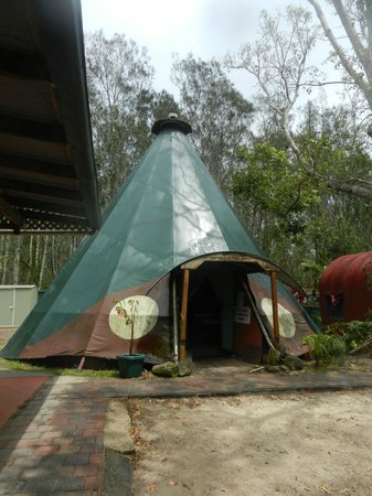 The Arts Factory Backpackers Lodge : Teepee dorm