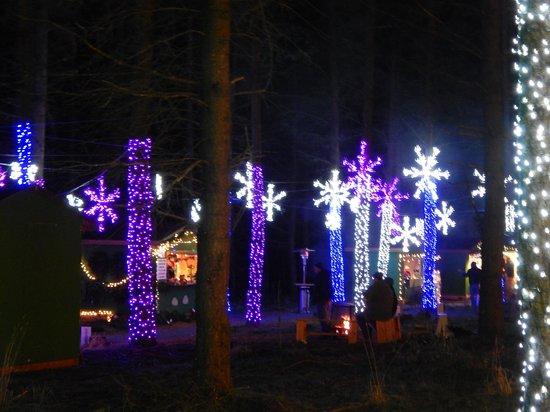 Oregon Garden : Christmas at the Garden