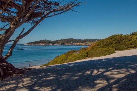 Vagabond's House Inn: Carmel Bay and Beach just a short walk from inn.