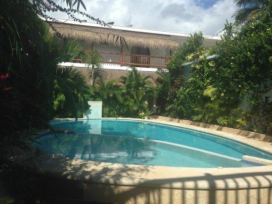 Posada Yum Kin: Beautiful pool!