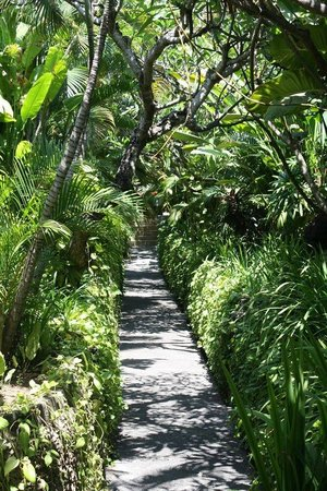 Kuta Seaview Boutique Resort & Spa: Beautiful Tropical gardens
