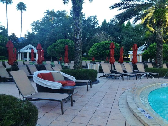 Renaissance Orlando at SeaWorld: Pool Seating