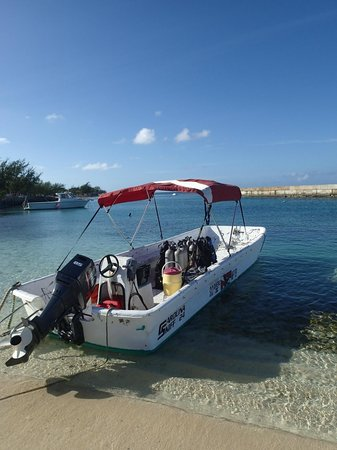 Tradewind Guest Suites on Salt Cay: Dive Boat