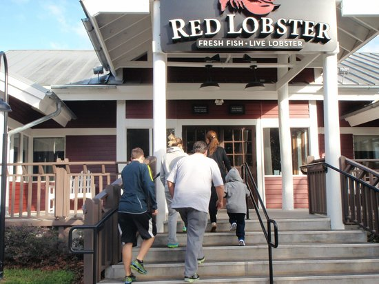 Find Red Lobster in Daytona Beach with Address, Phone number from Yahoo US Local. Includes Red Lobster Reviews, maps & directions to Red Lobster in Daytona Beach and more from Yahoo US Local/5(31).