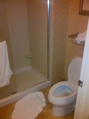 Homewood Suites by Hilton Orlando Airport: Bathroom/Shower 1