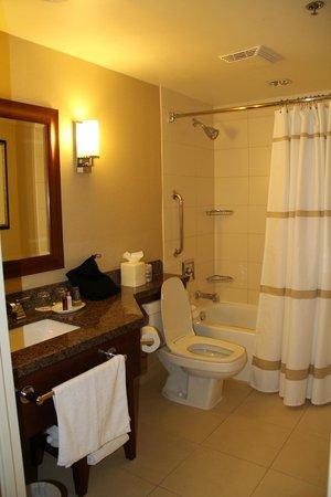 Chicago Marriott at Medical District/UIC : Bathroom