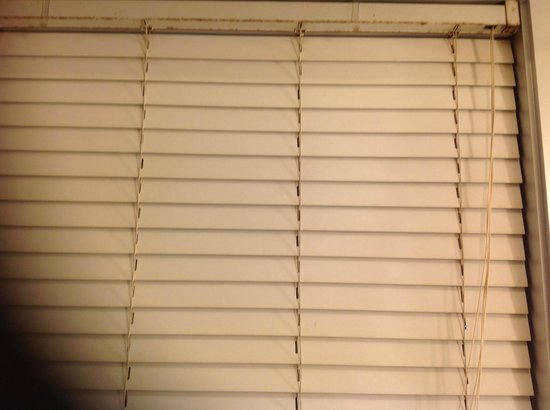 Loews Philadelphia Hotel: Outdated and rusty/dirty mini blinds in the bathroom
